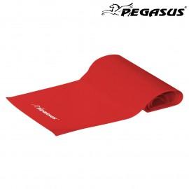 Λάστιχο Ενδυνάμωσης Κορδέλα Pegasus® (Light) Β 6308-L