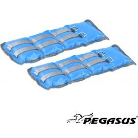 Pegasus® Βάρη Άκρων (1.5kg - Zεύγος) Β-2112-15