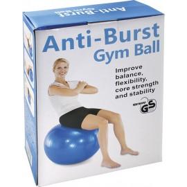Μπάλα γυμναστικής κινησιοθεραπείας AMILA (47064)